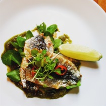 Grilled sardines with salsa verde